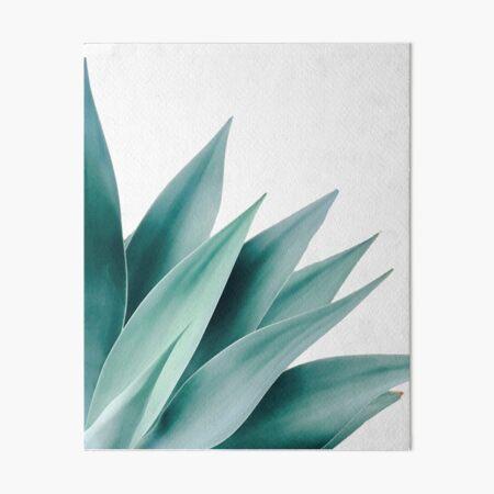 Agave flare II Art Board Print
