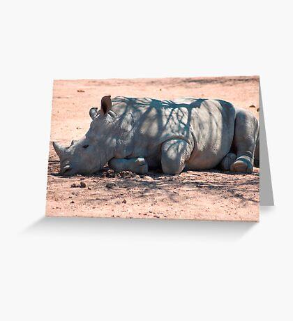 A CALF - WHITE RHINOCEROS - Ceratotherium simum Greeting Card