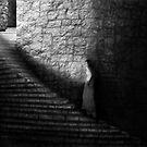 39 steps by Devon Mallison