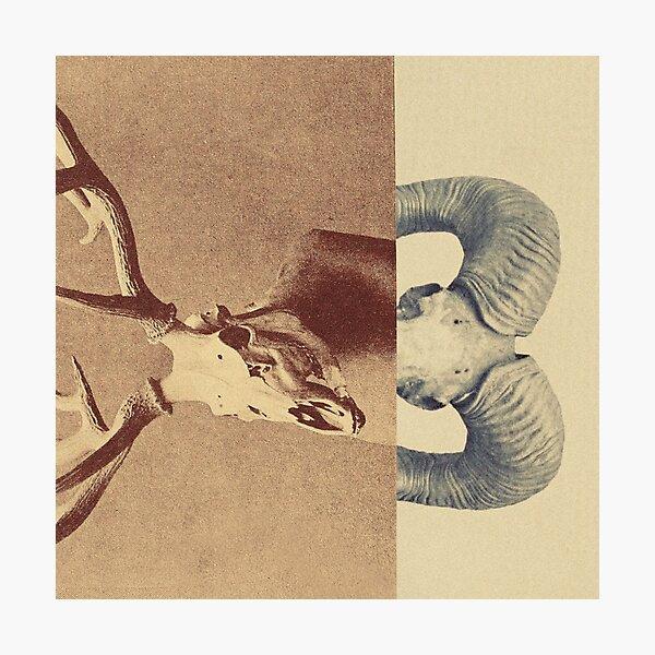 Change Photographic Print