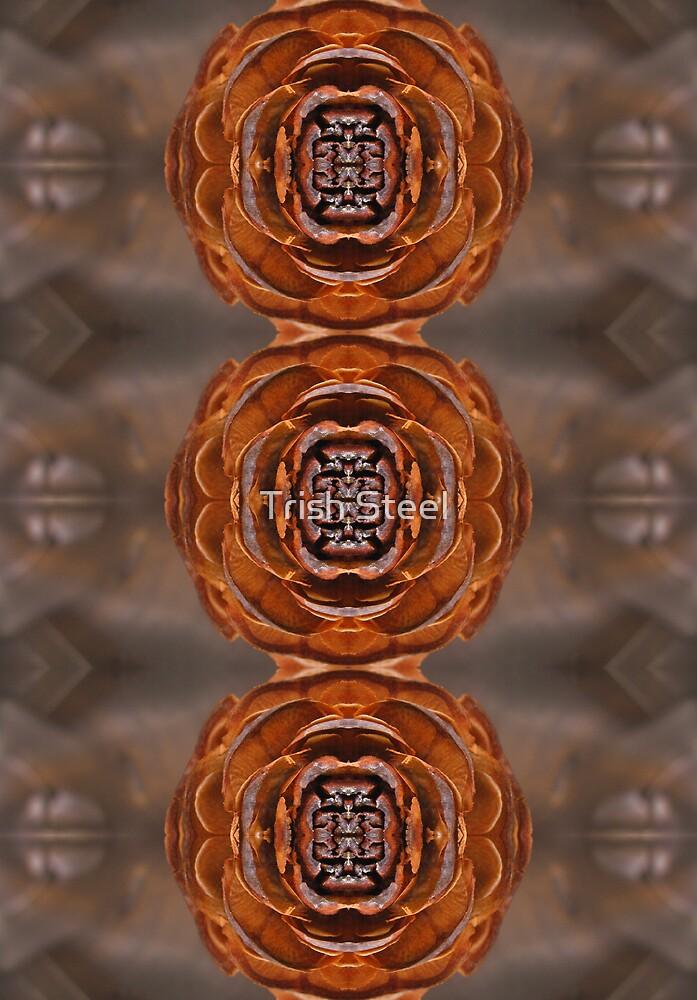 Cedar Rose by TriciaBacal