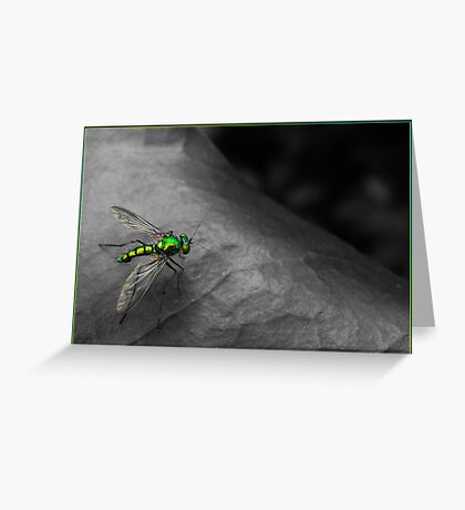 Green armour Greeting Card