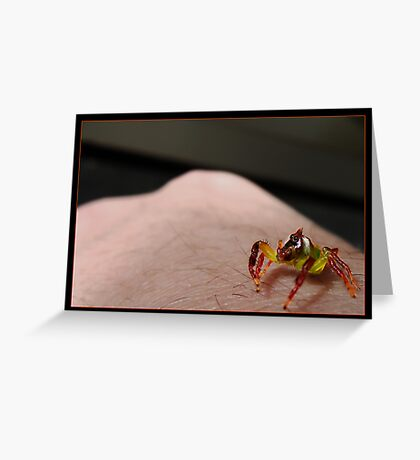 Look at the size of that Human! Greeting Card