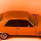 Carrot Colour Car Orange by TeAnne