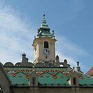 Bratislava Old Town Hall by Elena Skvortsova