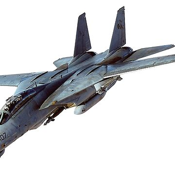 Tomcat, Jet, American, Grumman, F-14, supersonic, twin-engine, two-seat, variable-sweep wing, fighter aircraft.  by TOMSREDBUBBLE