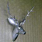 Metal Stag's Head by Woodie