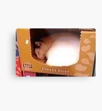 Cheese Onion Cat Metal Print