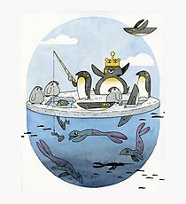 All Hail The Penguin King Photographic Print