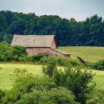 green acres by KENDALLMcKERNON
