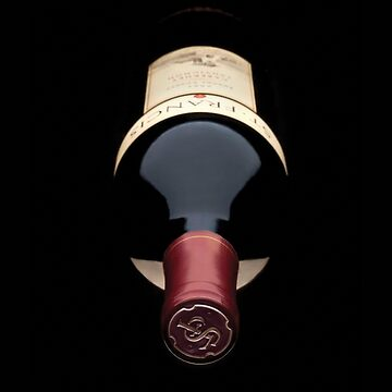 Wine Lover Bottle of Red Wine by snowgraphs