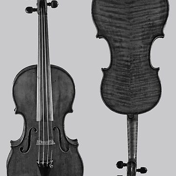 Violin by Thornepalmer