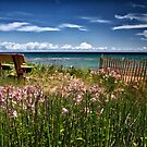 A Bench With a View by Kathy Weaver
