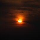 Burnt Umbra by thestormworks