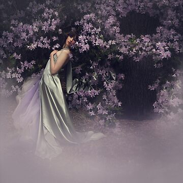 Enchantment by AngiNelson