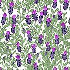 April blooms(Lavender) by Kanika Mathur  Design