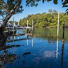 Up the creek - Lota Creek, South East Queensland by hanspeder