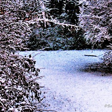 """""""Snowy Pathway""""... prints and products by ArtbyBob"""
