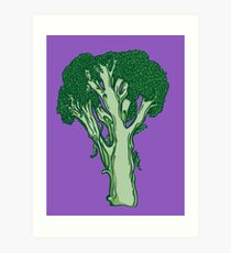 Anatomic Broccoli Art Print