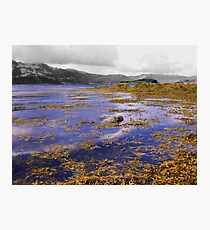 Lochcarron at High Tide Photographic Print