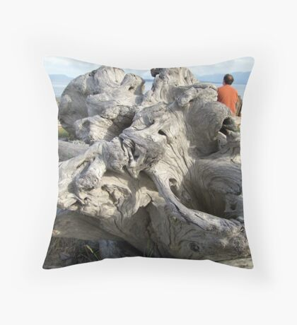 Weatherbeaten Throw Pillow