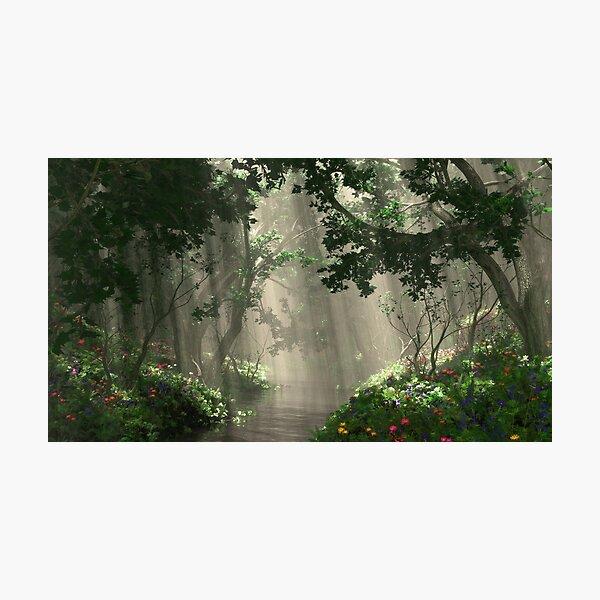 Dapplewood (Spring) Photographic Print