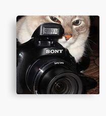 Camera Cat Canvas Print