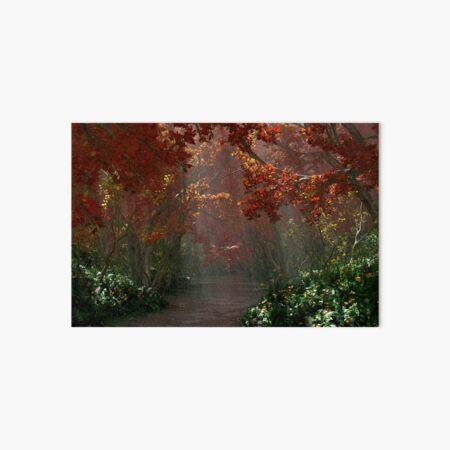 Dapplewood (Autumn) Art Board Print