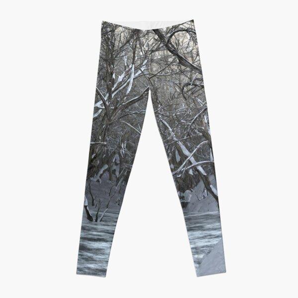 Dapplewood (Winter) Leggings