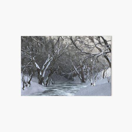 Dapplewood (Winter) Art Board Print