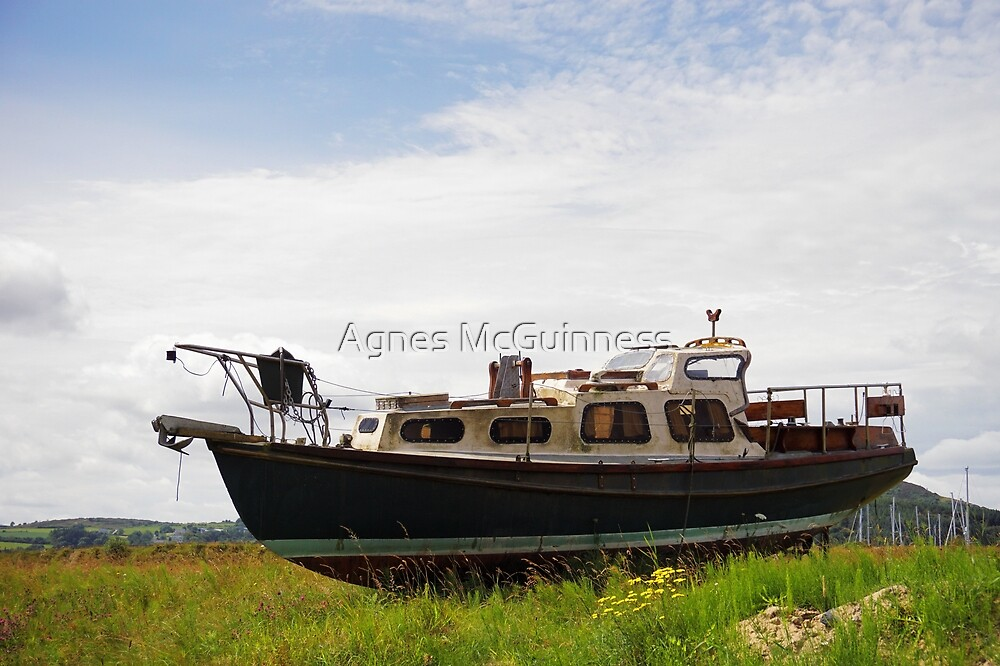 Stranded - an old boat by Agnes McGuinness
