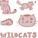 IWU Wildcats by jenecaz
