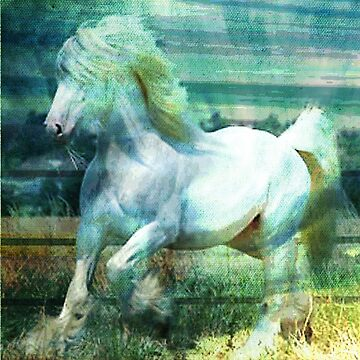 DREAM HORSE by Tammera