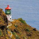 Makapu'u Lighthouse by Cheryl  Lunde