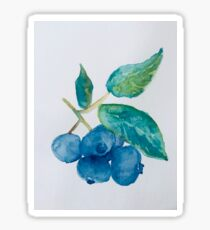 Watercolor Blueberries Sticker