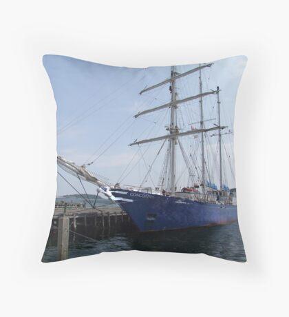 Concordia Throw Pillow