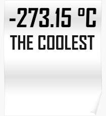 -273,15 Grad Celsius: Der coolste- Lustige Thermodynamik-Witz Poster