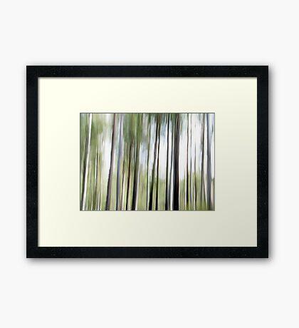 Cottan-Bimbang #1 Framed Print