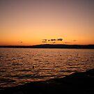 Maine by BLAMB
