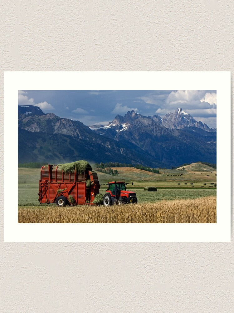 Alternate view of Making Hay, Shadow of the Tetons, Walton Ranch Art Print