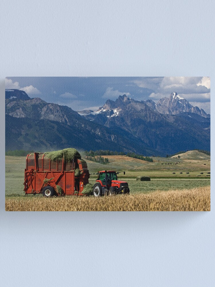 Alternate view of Making Hay, Shadow of the Tetons, Walton Ranch Canvas Print