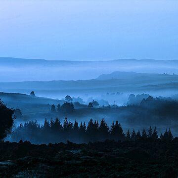Morning Mist over Forest by Grathicks