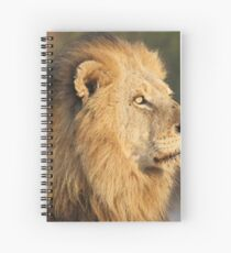 Mapogo lion in his prime Spiral Notebook