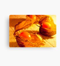 Fruit in a Basket: Physalis Fruit Canvas Print