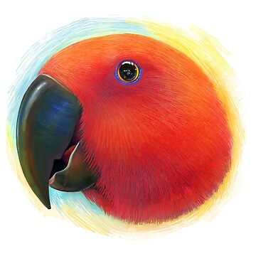 Red female eclectus parrot realistic painting by lifewithbirds