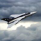 Panavia Tornado F3 ZE887 by Airpower Art