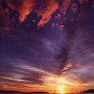 Victor mornings by Steve Chapple