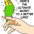 Budgies make life better by lifewithbirds
