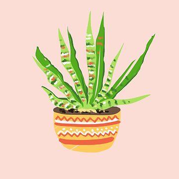 Aloe Plant by muktalata-barua