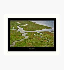 Wetland Art Print